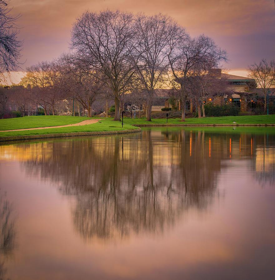 Sunset Photograph - Sunset in the Park by Jonathan Hansen
