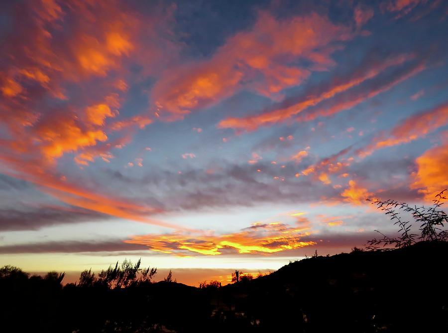 Sunset of the Golden Serpent by Judy Kennedy