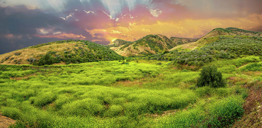 Sunset on Spring in Simi Valley by Lynn Bauer