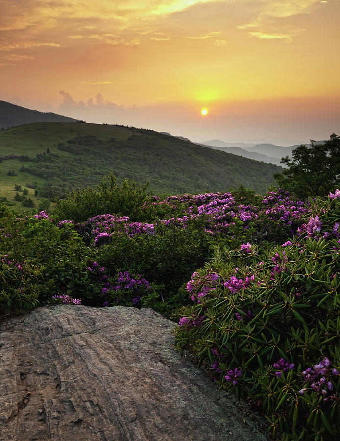 Sunset On The Appalachian Trail Photograph by Jerry Whaley