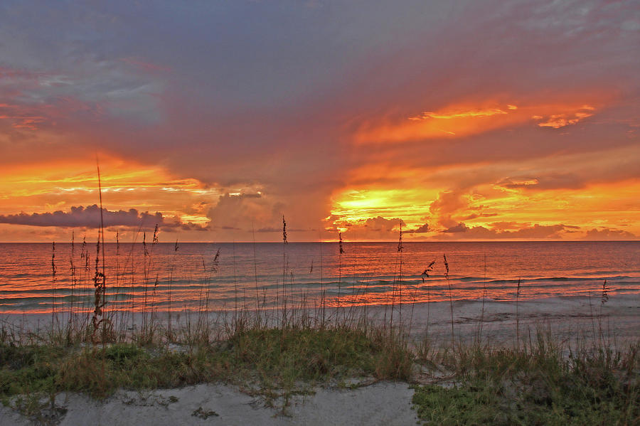 Sunset On The Gulf by HH Photography of Florida