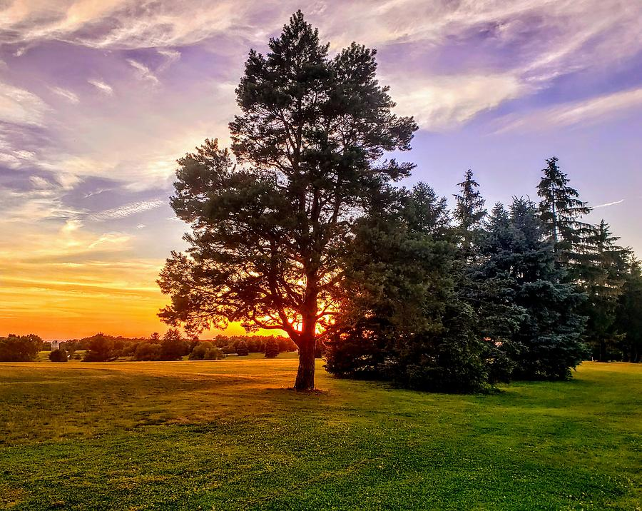 Gold Photograph - Sunset On The Links  by Paul Kercher