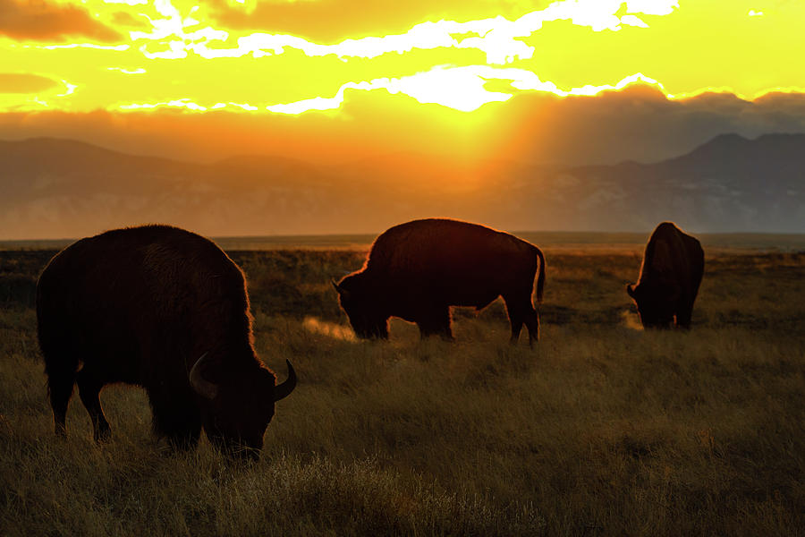 Sunset on the Plains of Colorado by Gary Kochel