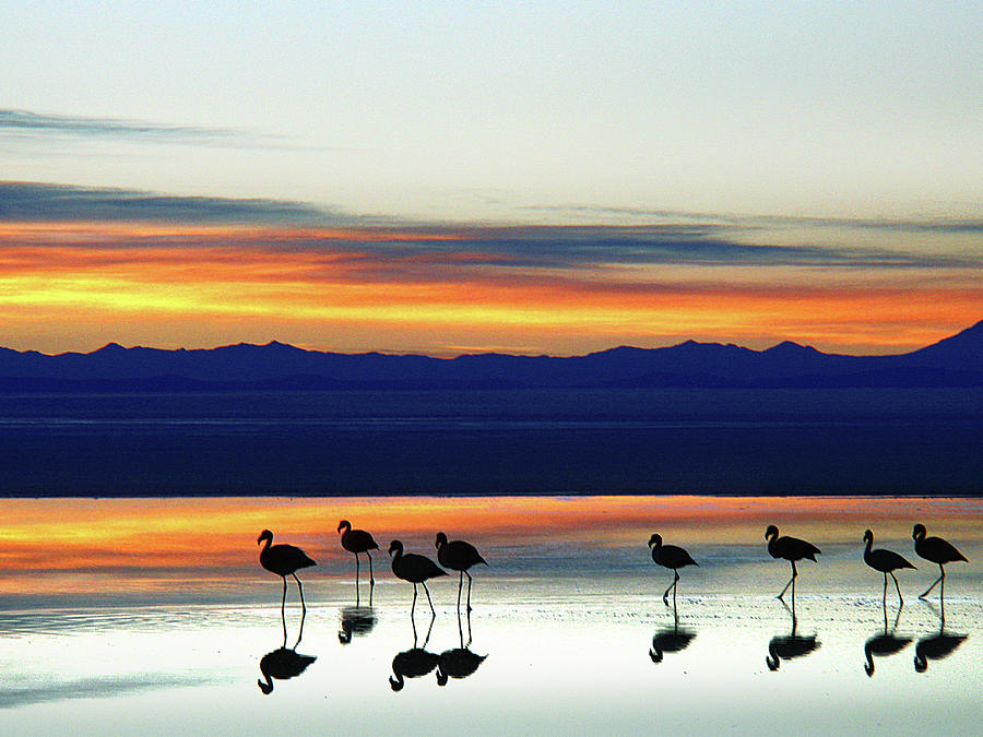 Sunset On The Uyuni Salt Desert, Bolivia Photograph by Raúl Barrero Photography