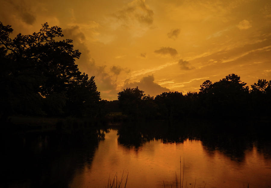 Sunset Over a Pond by Philip Rispin