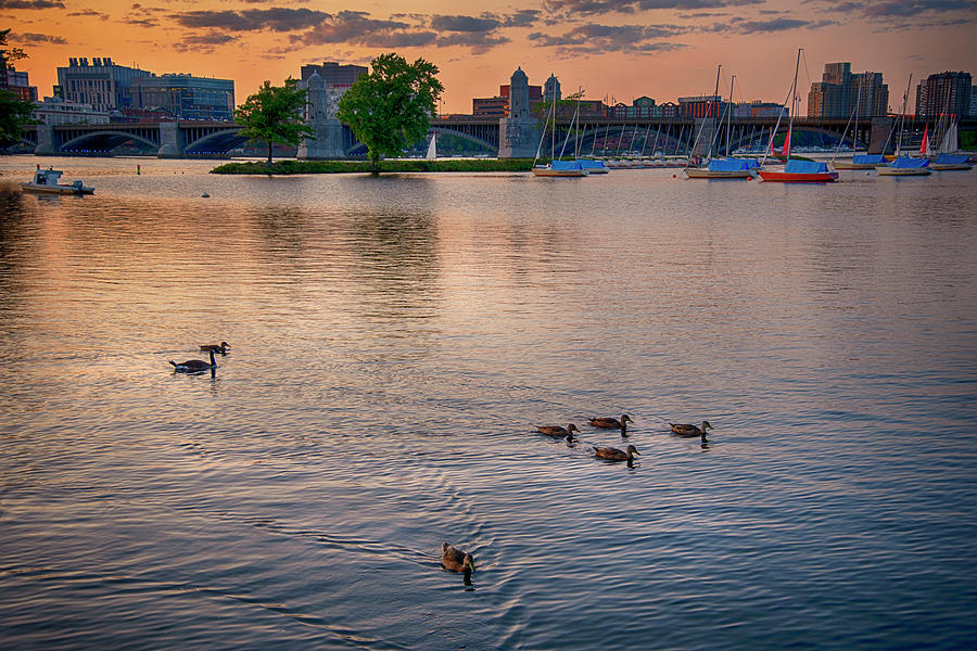 Sunset Over the Longfellow And the Charles by Joann Vitali