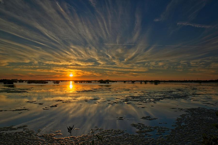 Sunset over the salt marsh by Roy Thoman