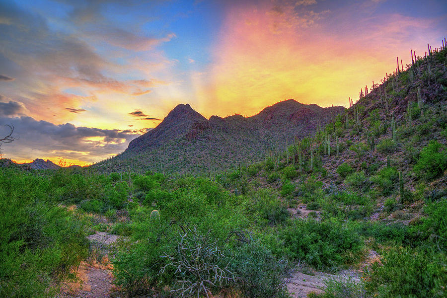 Sunset over the Tucson Mountains, Arizona by Chance Kafka