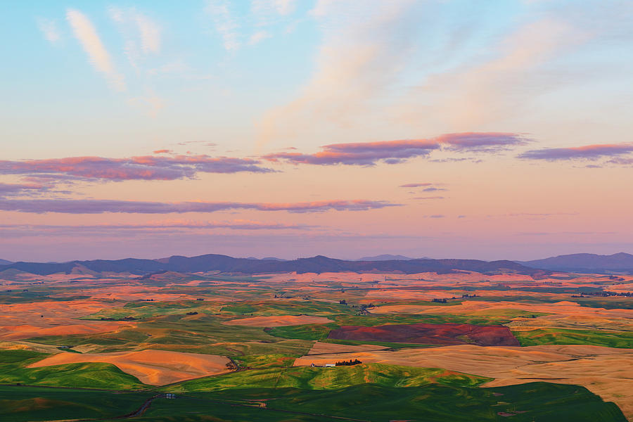 Sunset Palouse Hills of Wheat Land by Michael Lee