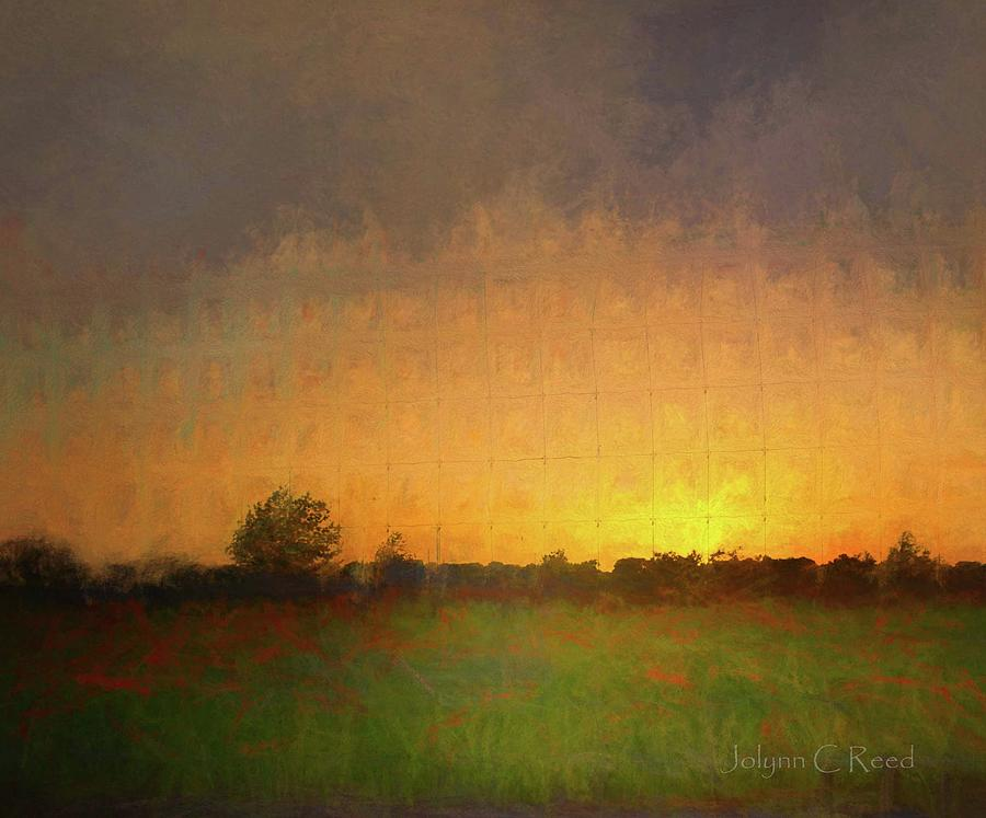 Sunset Poppy Field by Jolynn Reed