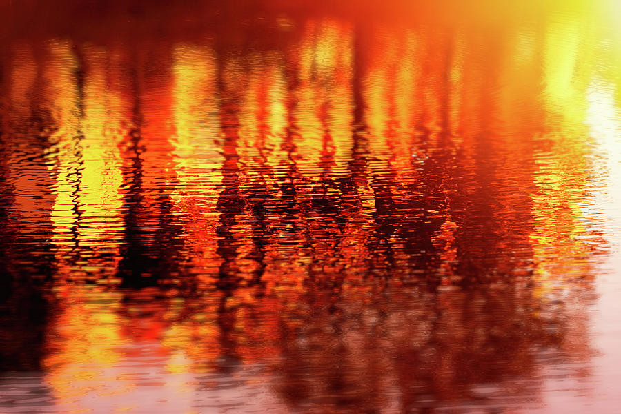 Sunset Reflections by Anna Yanev