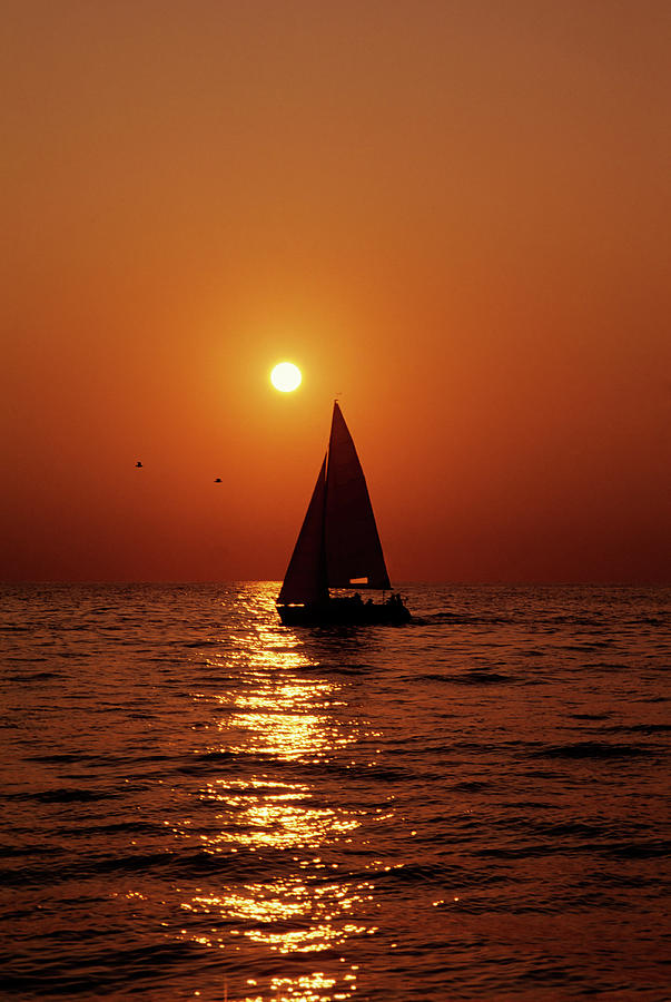 Sunset Sail Photograph by Tammy616
