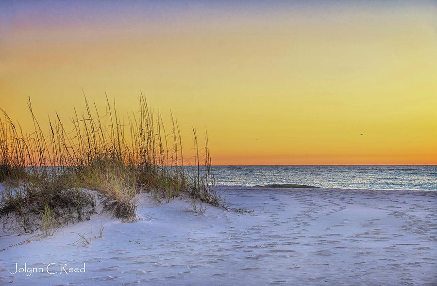 Sunset Sand Dune by Jolynn Reed
