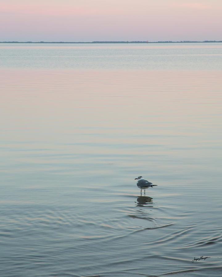 Sunset Solitude by Jurgen Lorenzen