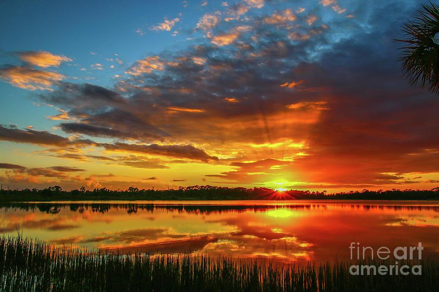 Sunset Sunburst by Tom Claud