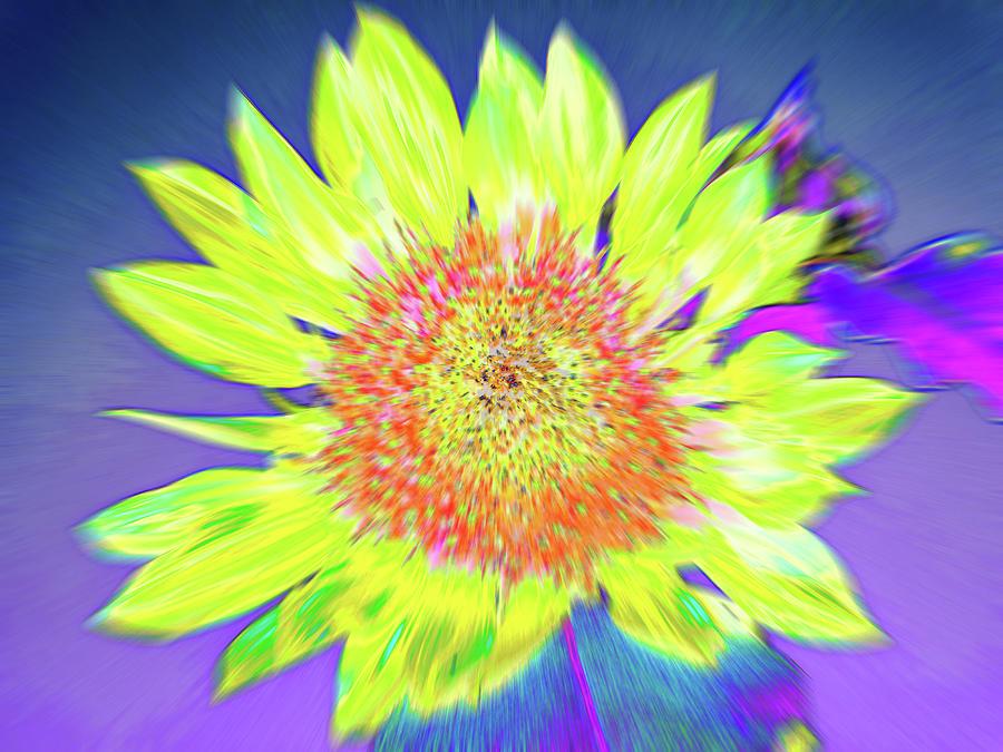 Sunspray by Cris Fulton