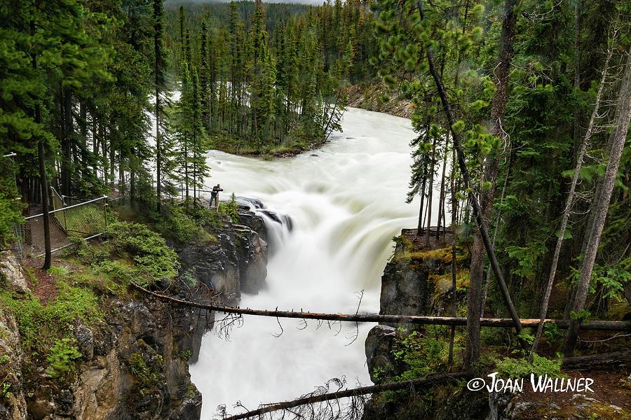 Alberta Photograph - Sunwapta Falls by Joan Wallner