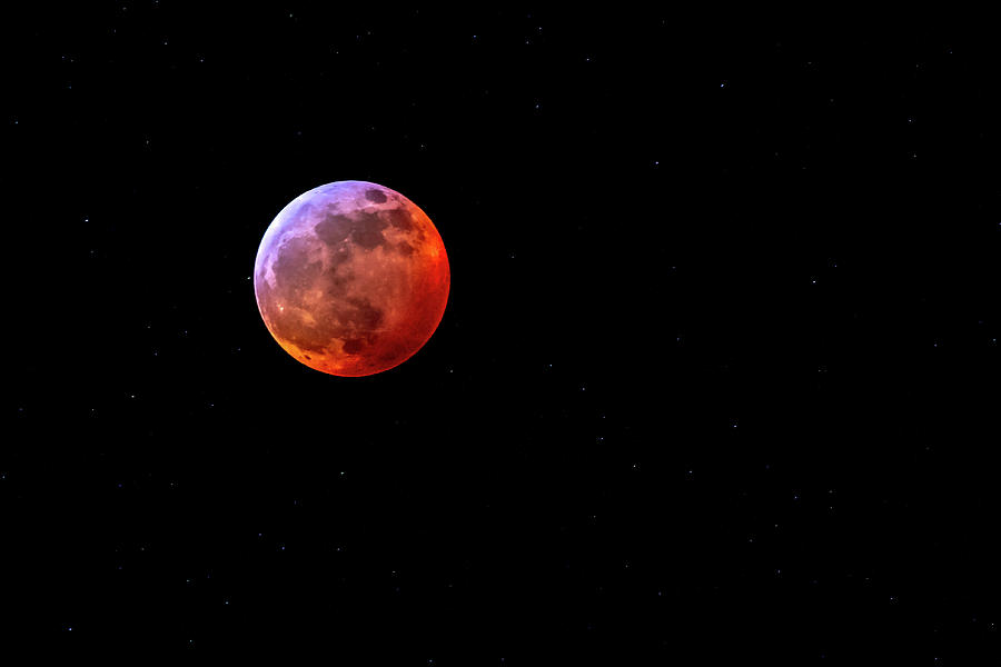 Super Blood Wolf Moon by Allin Sorenson