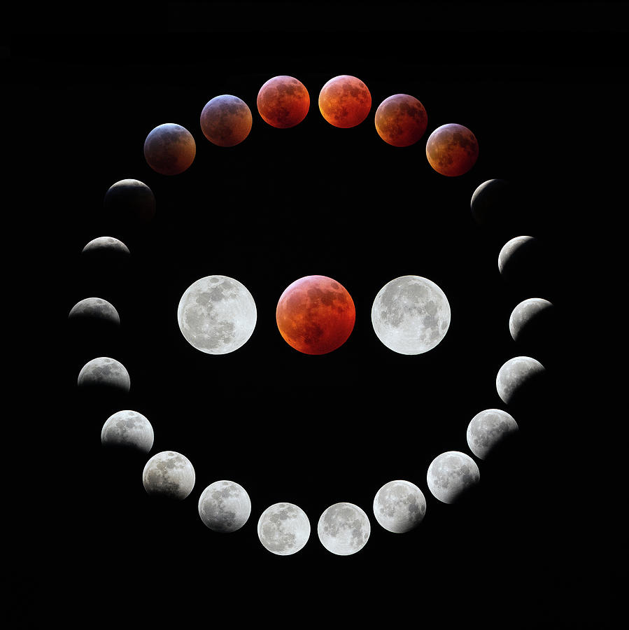 Moons Photograph - Super Blood Wolf Moon Eclipse by Greg Booher