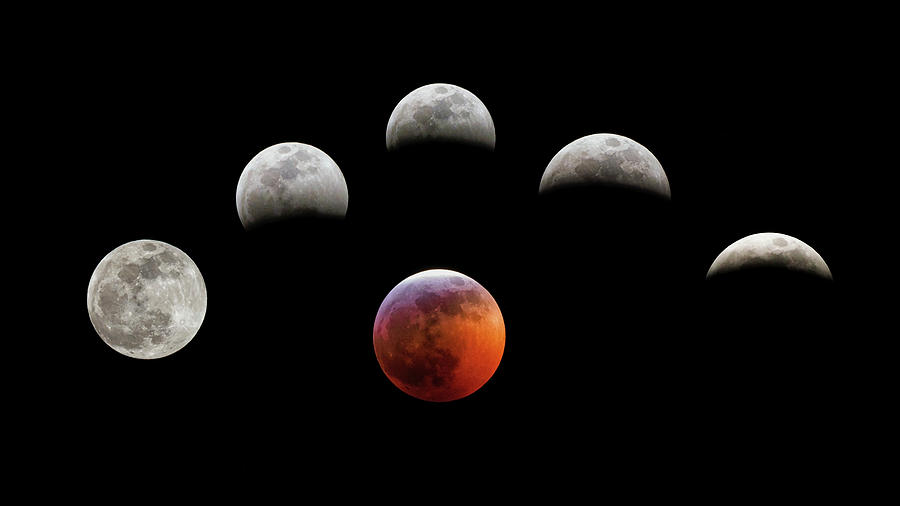 Super Blood Wolf Moon by Van Sutherland