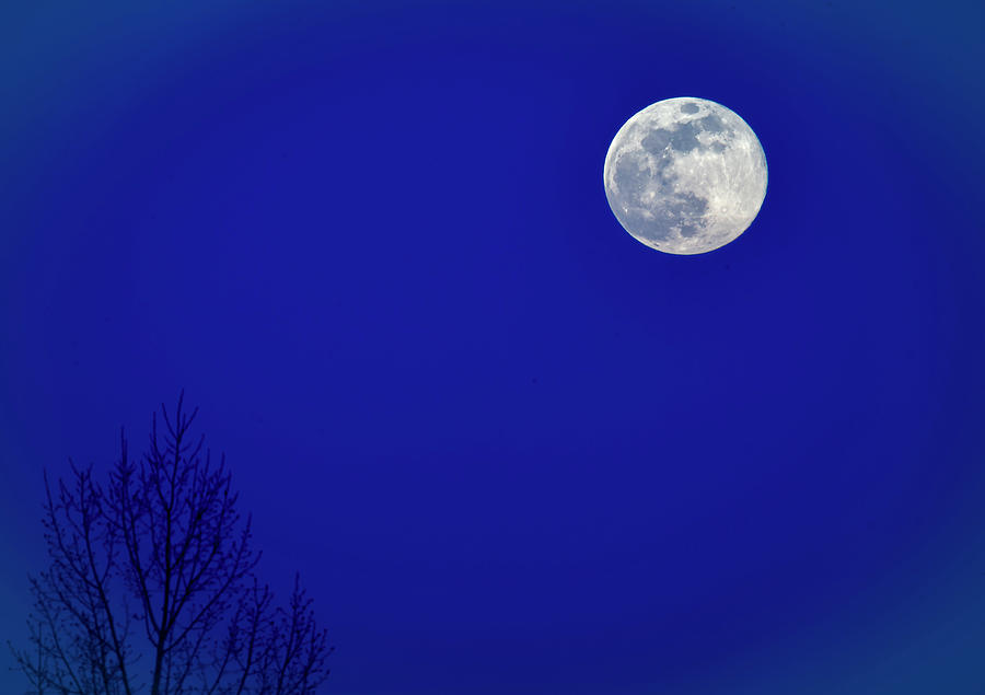 Super Moon Rise by Philip Rispin