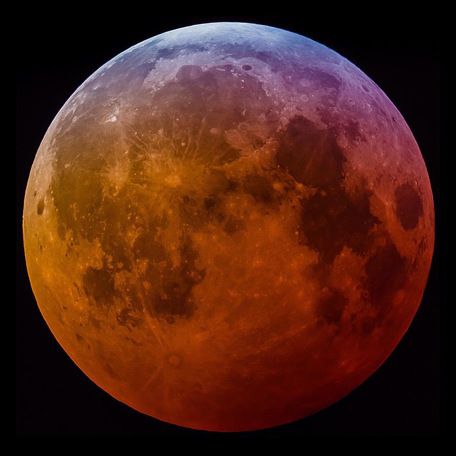 Super Photograph - Super Wolf Blood Moon Lunar Eclipse of 2019 by Dejan Kostic