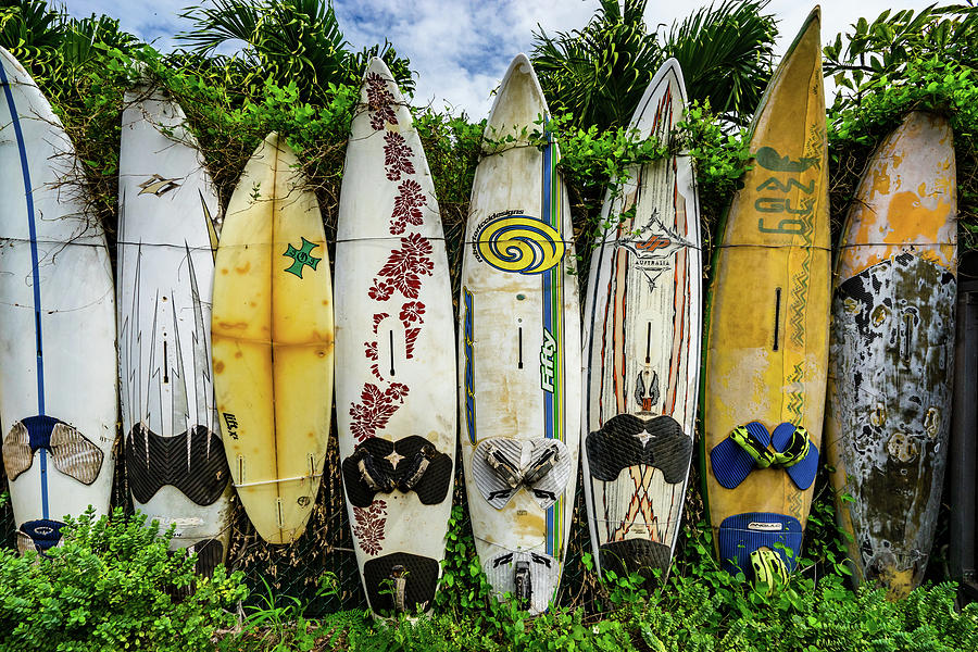 Surfboard Fence by Christopher Johnson