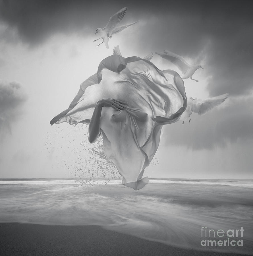 Surreal Black And White Picture Photograph by Vizerskaya