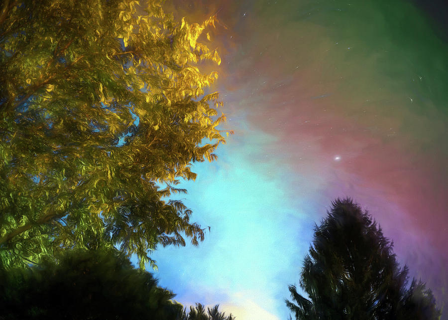 Surreal Stars and Trees by Jason Fink
