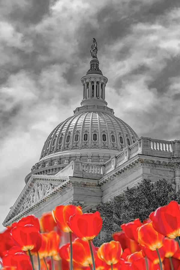 Surreal Us Capitol Photograph