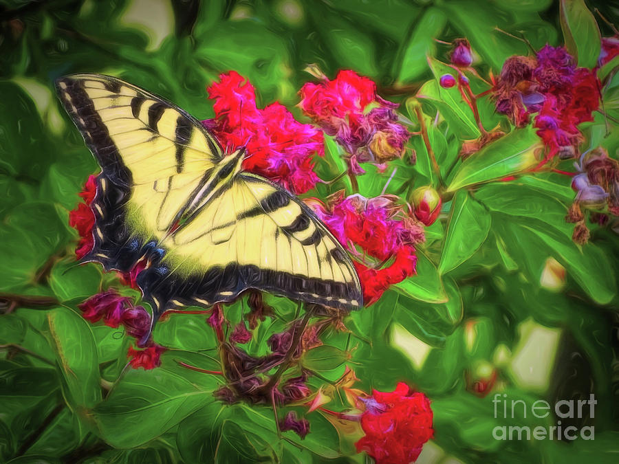 Swallowtail Among Flowers by Sue Melvin