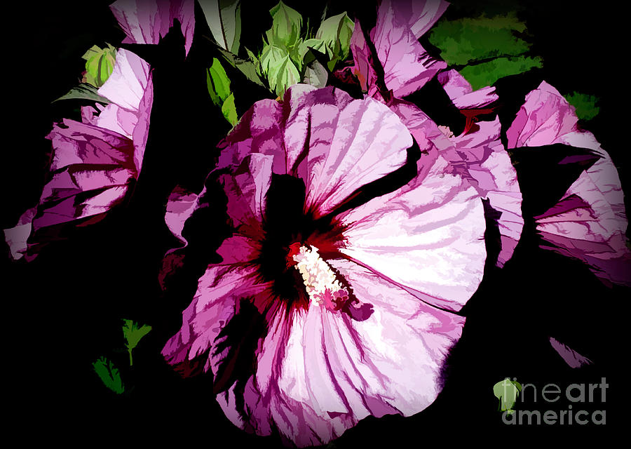 Swamp Rose Mallow by Diana Mary Sharpton