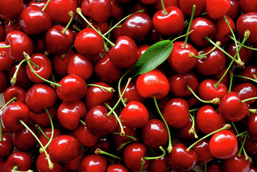 Sweet Cherries Photograph by Filonmar