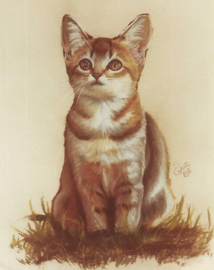 Sweet Kittie by Barbara Keith
