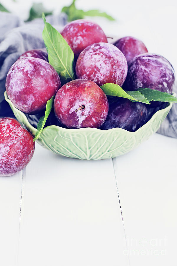 Sweet Plums by Stephanie Frey
