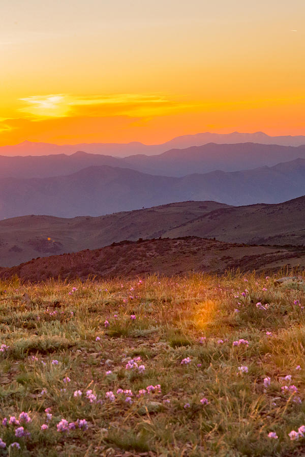 Sweetwater Sunset Photograph by Mark Miller