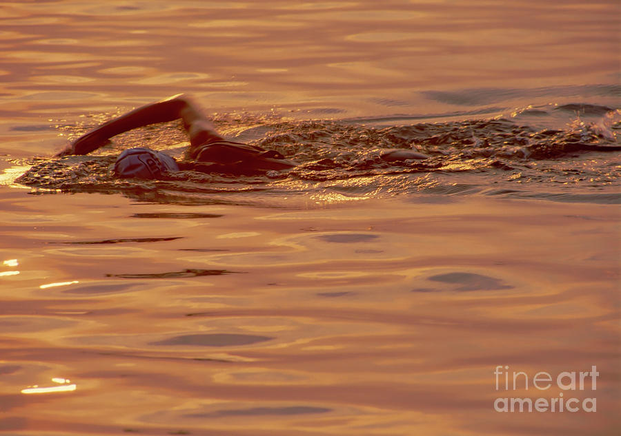 Swimmer 2 Chicago Triathlon swimmer at sunrise Lake Michigan  by Tom Jelen