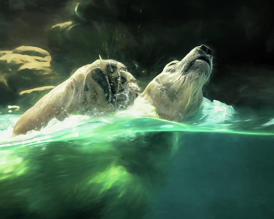 Swimming Bear II by Wade Brooks