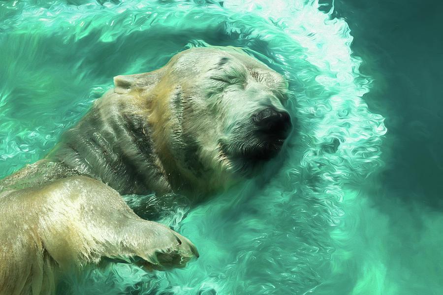 Swimming Bear by Wade Brooks