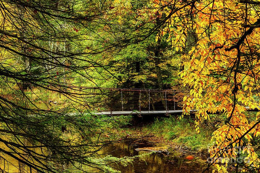 Swinging Bridge in Autumn by Thomas R Fletcher