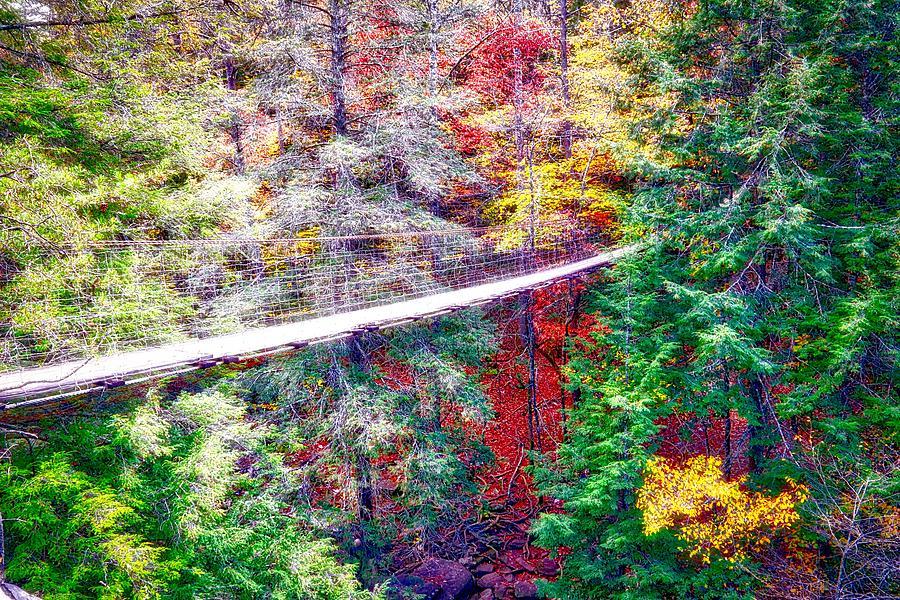 Swinging Bridge by Linda James