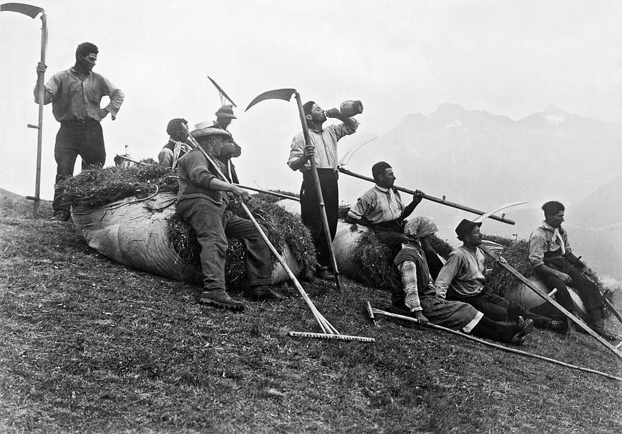 Swiss Farmers Harvest Hay by Underwood Archives