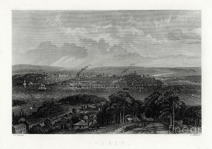 Sydney, Australia, 1883. Artist G Drawing by Print Collector
