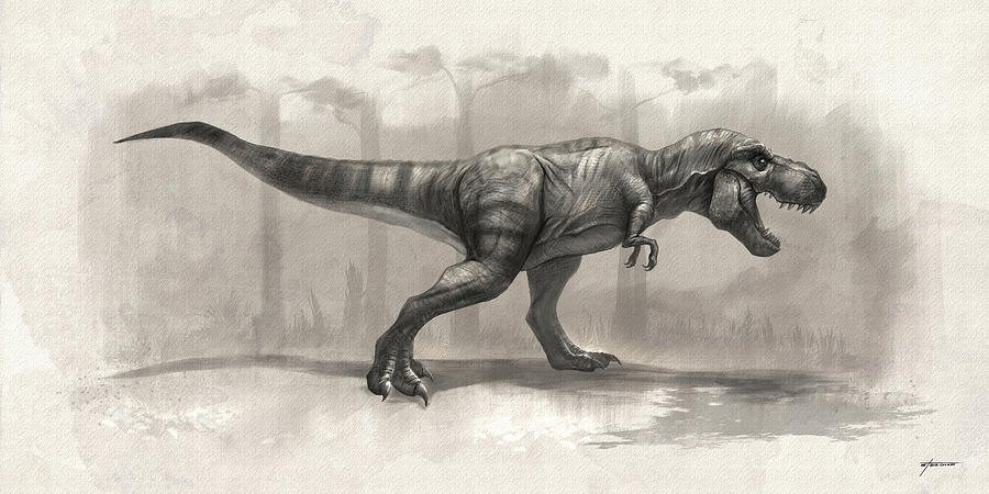 T-rex Digital Art - T-rex Drawing by Steve Goad