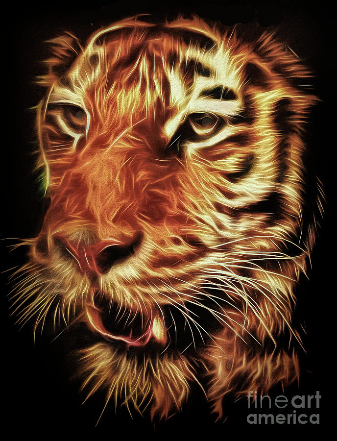 Tiger Photograph - T T T Tiger by Leigh Kemp