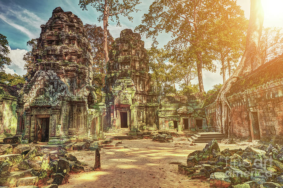 Ta Prohm Temple Angkor Wat Unesco World Heritage Site Photograph