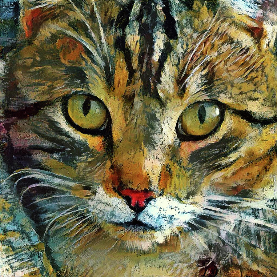 Tabby Cat Closeup - That Look by Peggy Collins