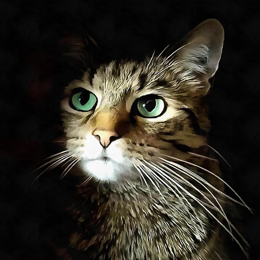 Tabby Cat With Green Eyes Isolated On Black by Taiche Acrylic Art