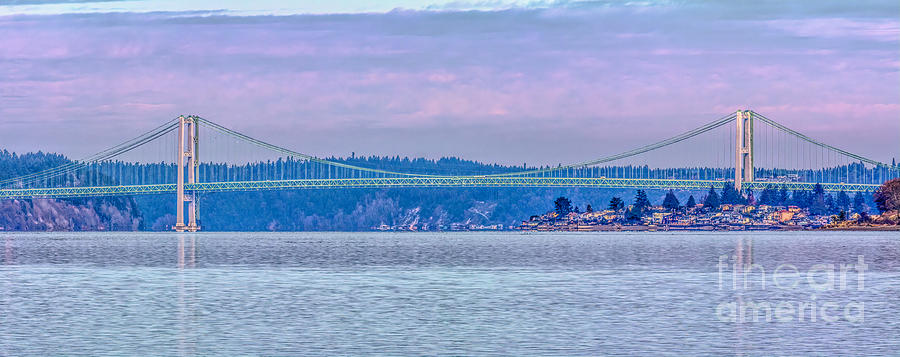 Bridge Photograph - Tacoma Narrows Bridge Landscape by Jean OKeeffe Macro Abundance Art