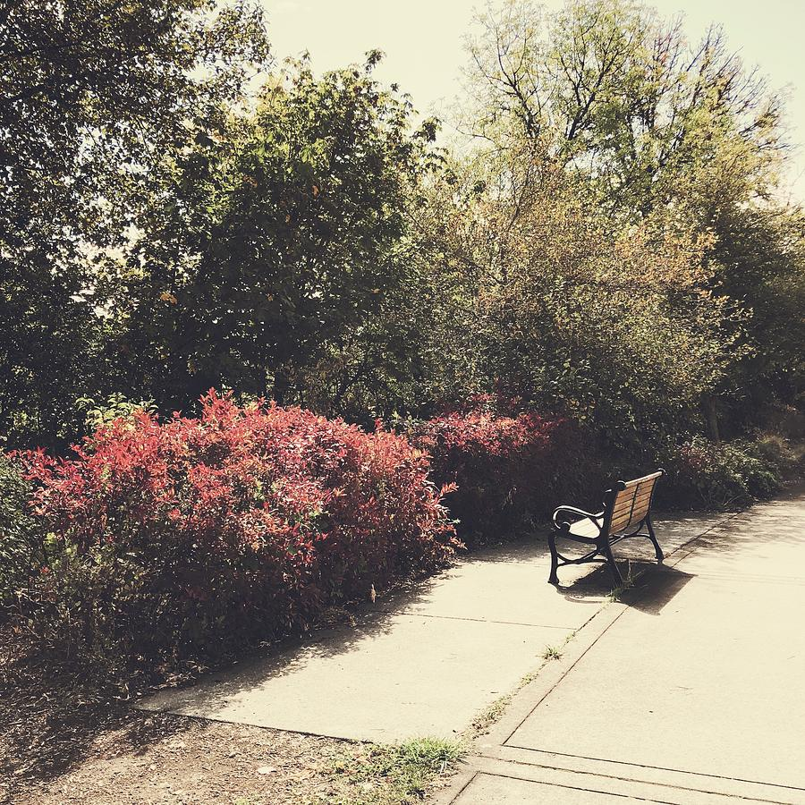 Park Bench Digital Art - Take A Load Off by Sharon Green